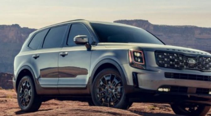 2021 Kia Telluride parked outside near a cliff