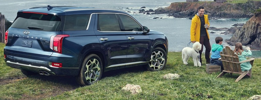 2021 Hyundai Palisade parked on grass near a body of water as a family sits near it