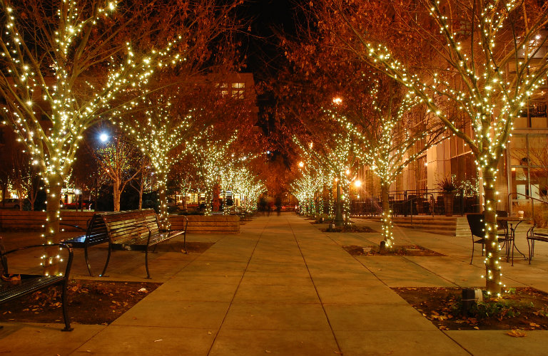 christmas lights on trees in city
