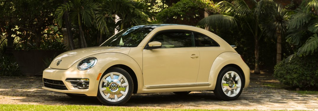 What's different about 2019 Beetle Final Edition Models?