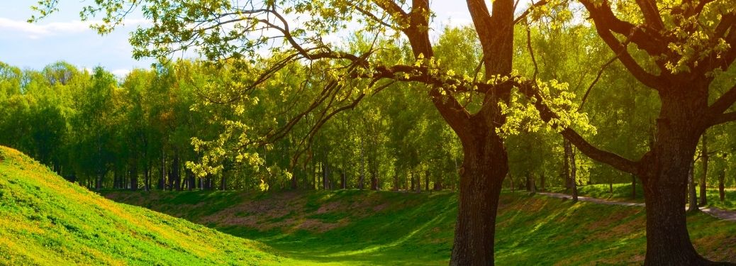 What are the best parks and tourist attractions near Thousand Oaks, CA?