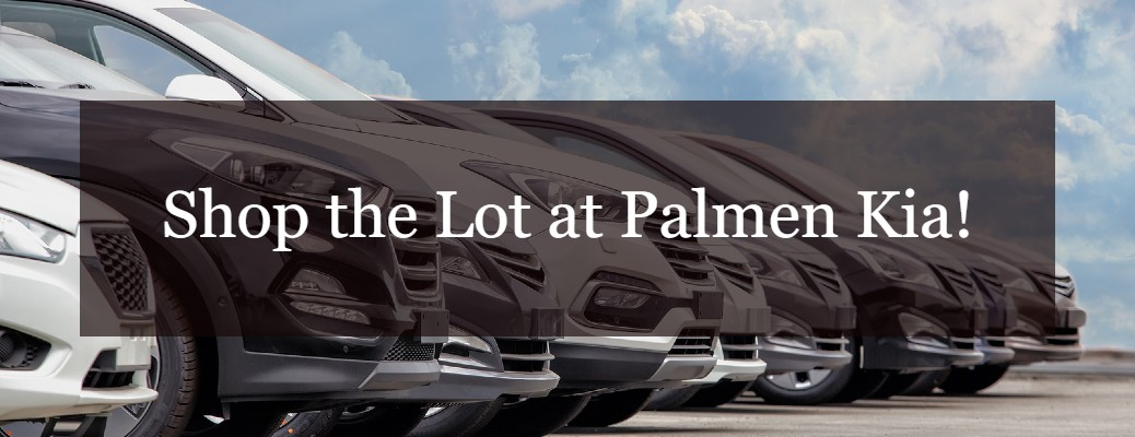 """A row of vehicles with the """"Shop the Lot at Palmen Kia"""" caption."""