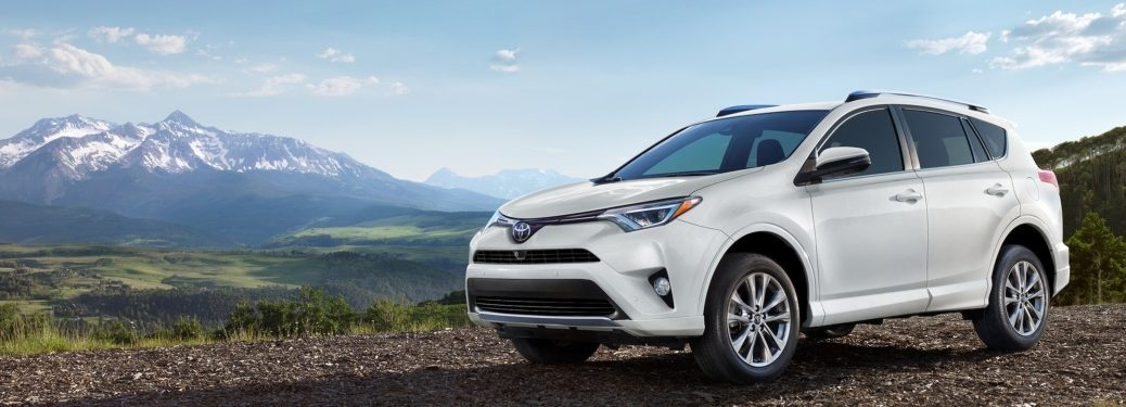 2019 Toyota RAV4 white side view