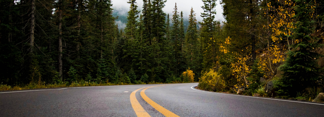 A winding highway road in the forest