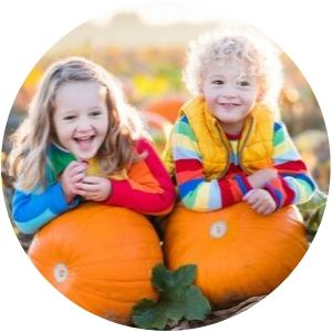 Two Little Girls Smiling with their Pumpkins in a Pumpkin Patch
