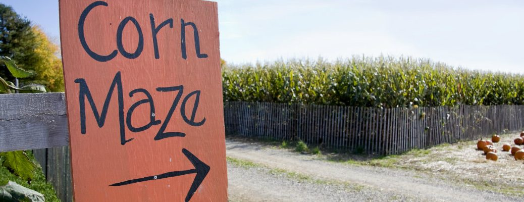 Top Fall Corn Mazes in North Jersey