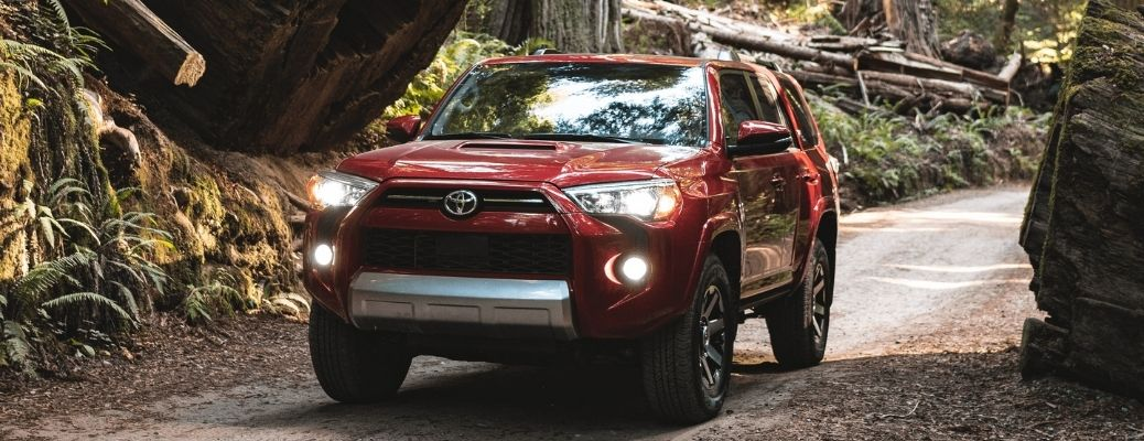 2021 Toyota 4Runner Front Left-Quarter View Driving Through a Forest.
