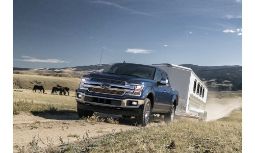 2019 Ford F-150 exterior shot towing a trailer through a dusty field with horses grazing behind it