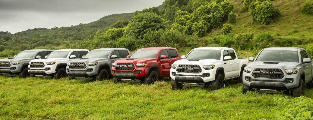 Find A Toyota Tacoma Color Option That Fits Your Style