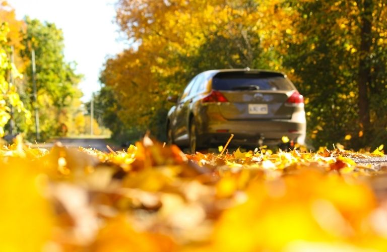 Vehicle driving on a fall road