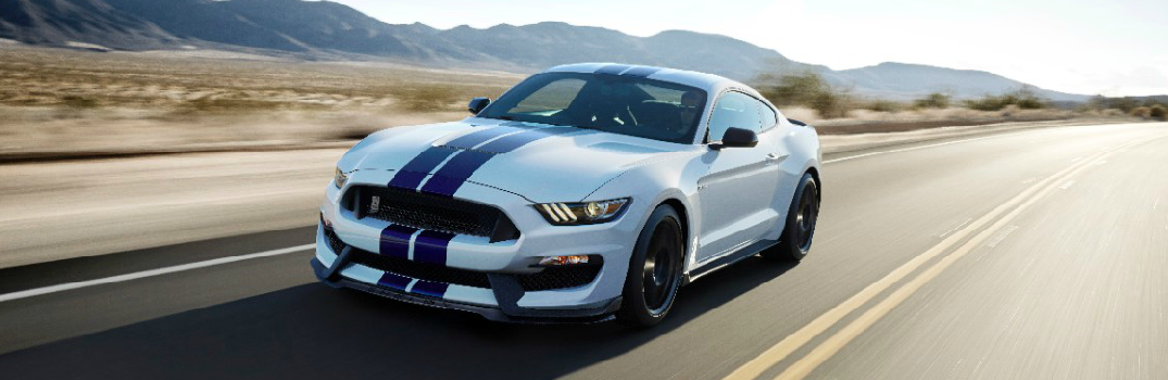 Shelby GT350 Color Options