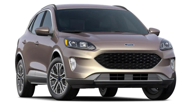2020 Ford Escape SEL trim on white background