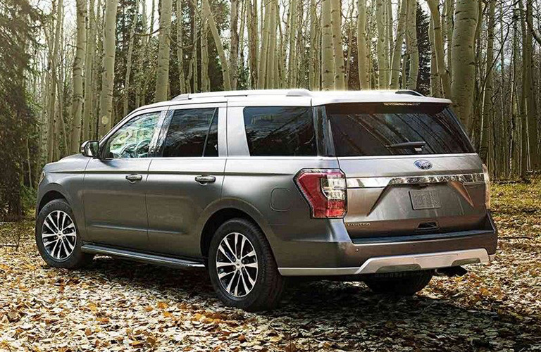 Rear view of Ford Expedition parked in woods