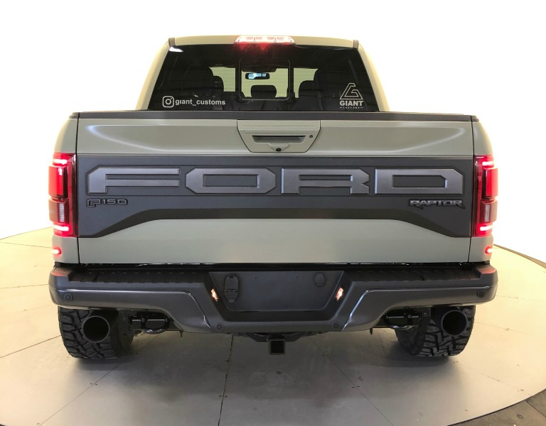 Giant Customs 2019 Ford F-150 Raptor rear view