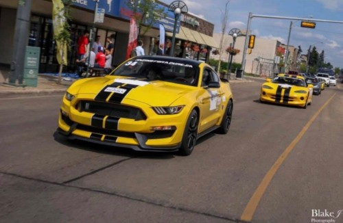 Ford Mustang in Racing For A Cure Parade