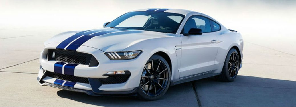 Ford Mustang Shelby® parked showing front and side profile