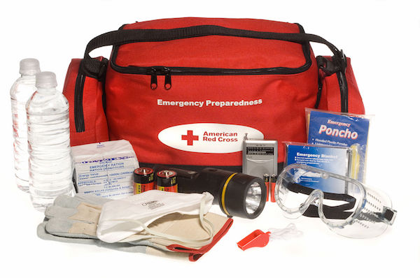 FEMA American Red Cross Emergency Safety Kit - car winterization tips