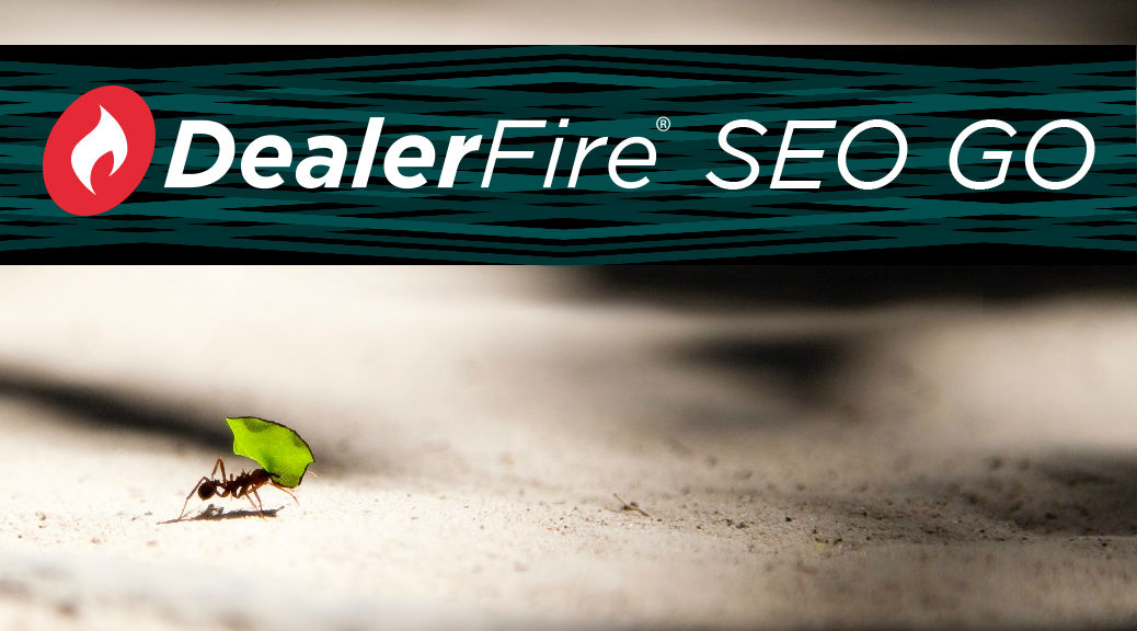 ant with leaf and text that says DealerFire SEO Go