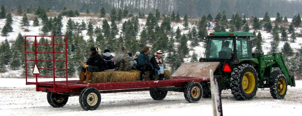Family riding on trailer pulled by a tractor while surrounded by snow and trees