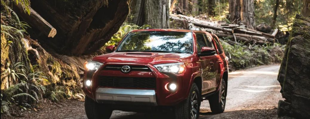 2021 Toyota 4Runner front view in jungle