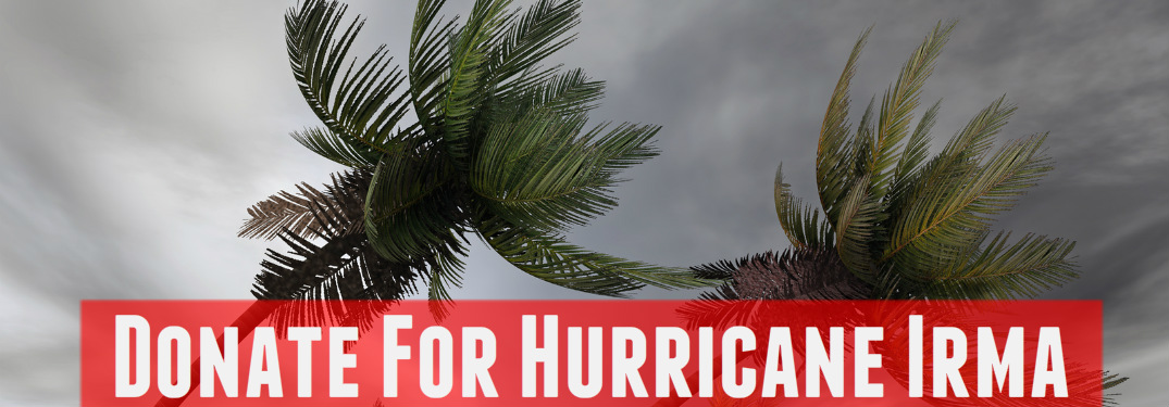 Best charities for hurricane relief