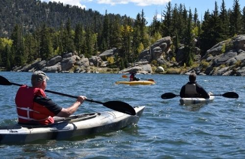 group of people kayaking near forest