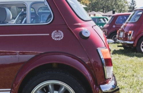 rear ends of mini coopers parked at a car show in a park