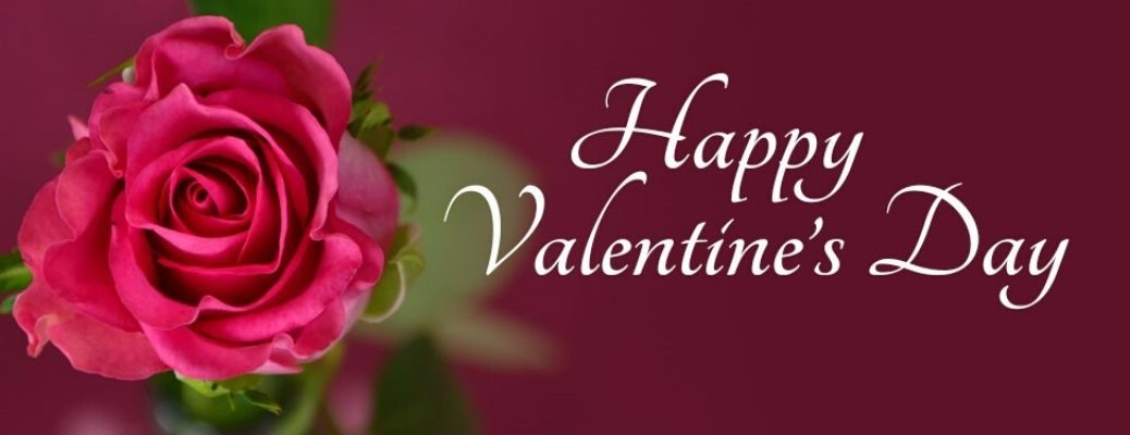 Happy Valentine's Day banner with a single rose