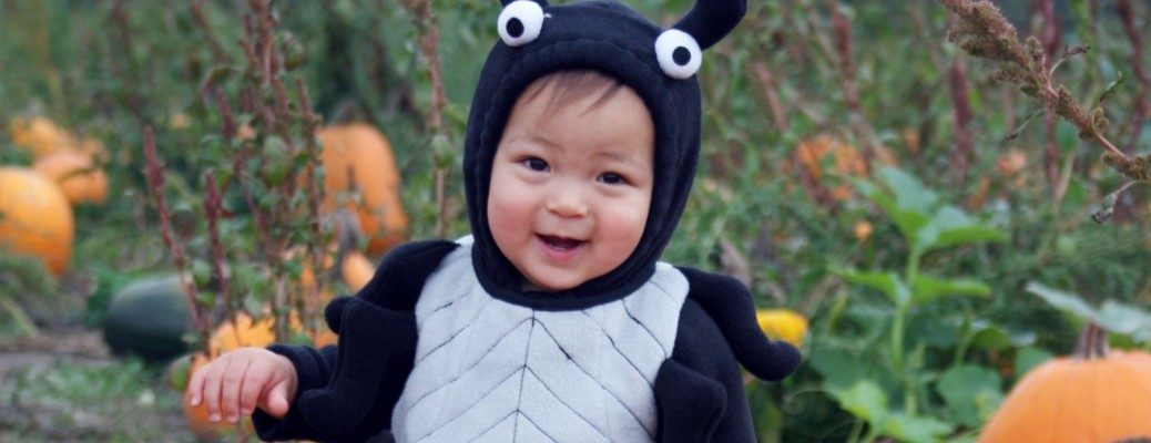 Young child wearing spider costume in pumpkin patch