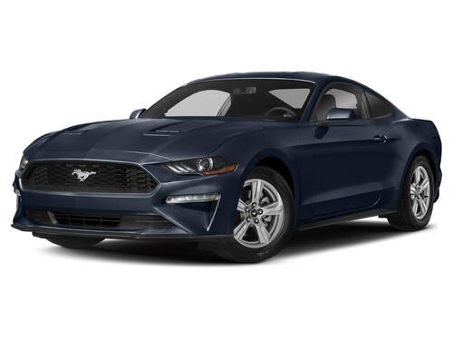 2019 Ford Mustang  Tampa FL