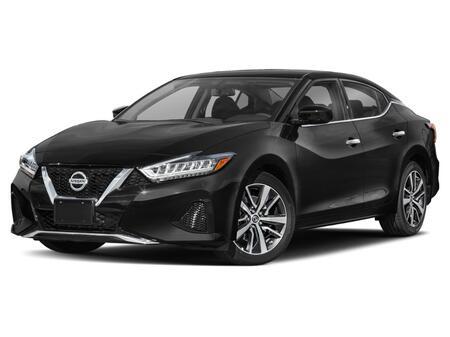 2020_Nissan_Maxima_3.5 SL_ Salisbury MD