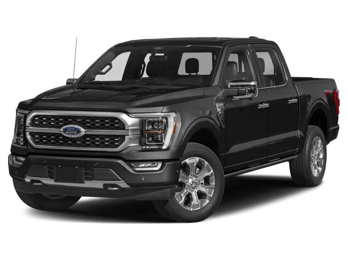 2021 Ford F-150 Platinum Watertown SD