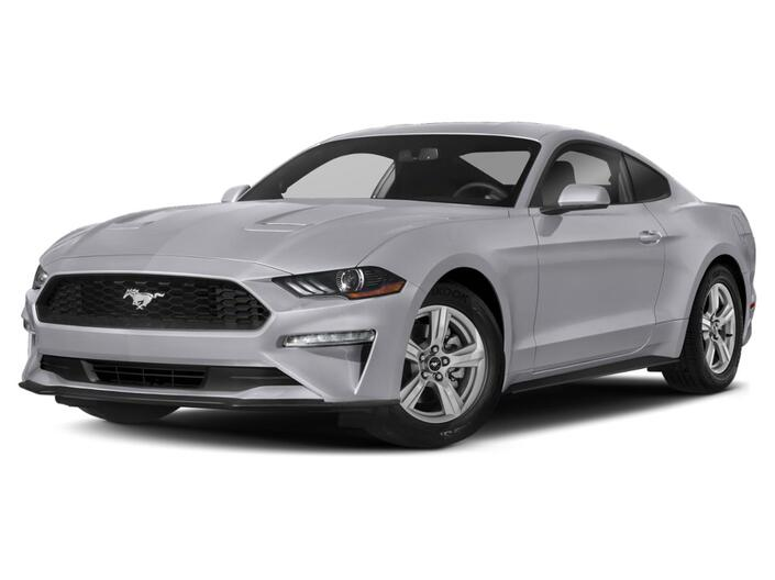 2021 Ford Mustang EcoBoost Calgary AB