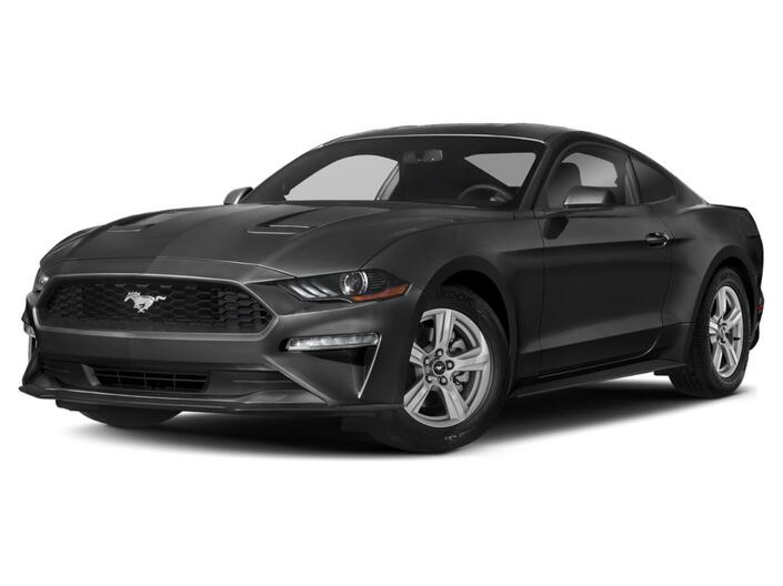 2021 Ford Mustang GT Essex ON