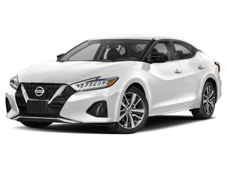2021_Nissan_Maxima_SV_ Salisbury MD