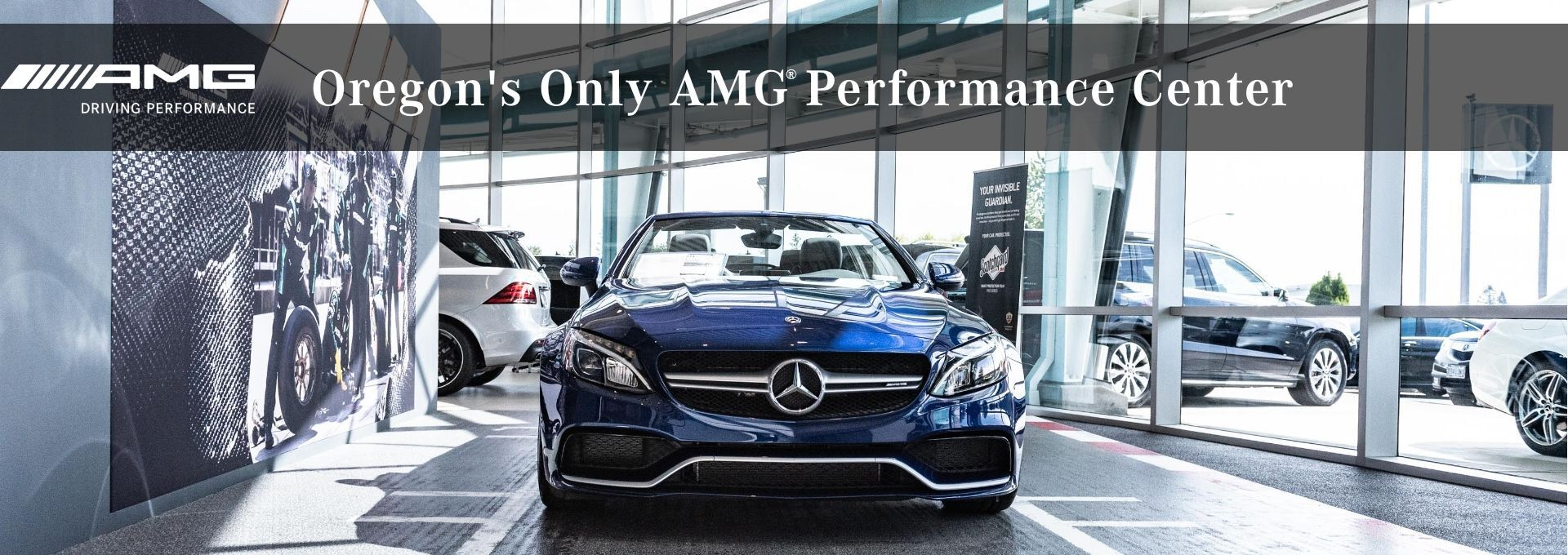 Mercedes Benz Dealership Portland Or Used Cars Mercedes Benz Of