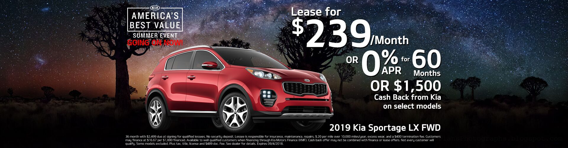 2019 Sportage Lease