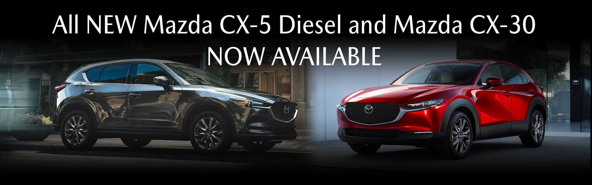 CX-30 and diesel CX-5