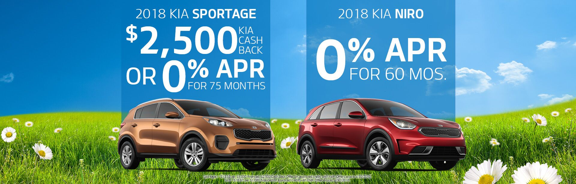 Sportage & Niro Offers