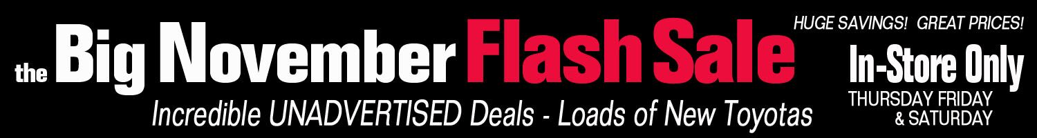 Big November Flash Sale