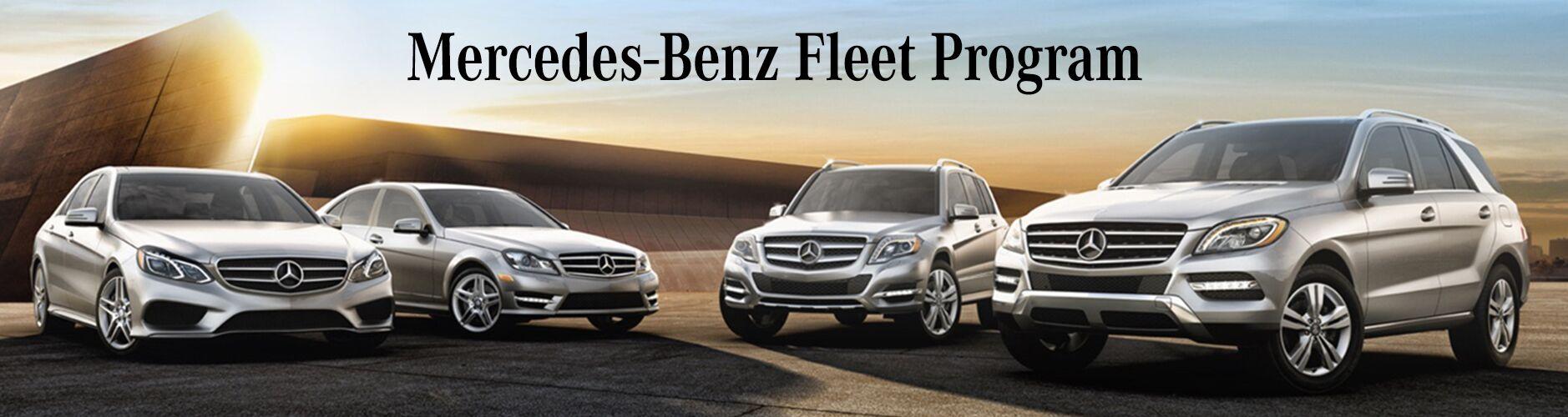 Fleet Incentives Sample