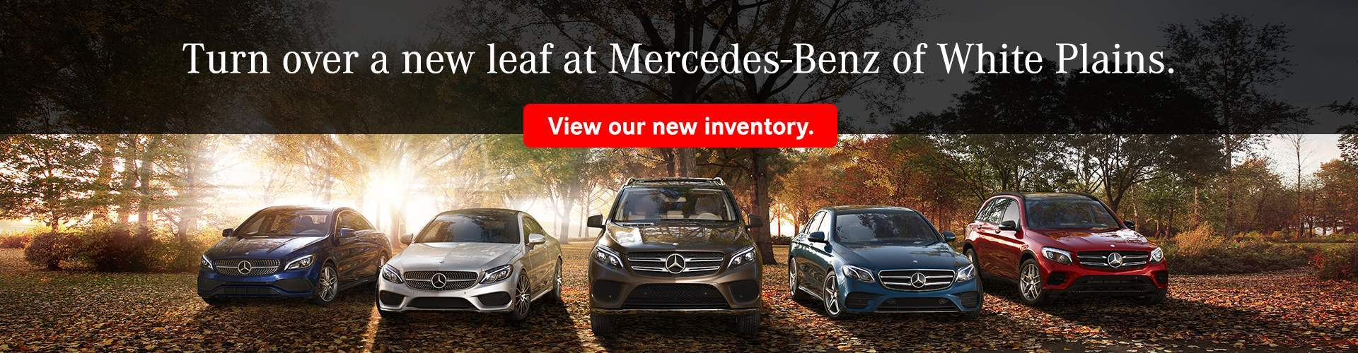 Mercedes Benz Dealership New Rochelle Ny Used Cars Upcomingcarshq Com