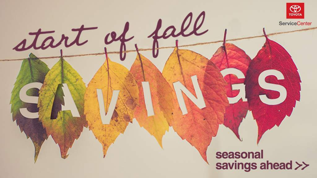 Fall Service Savings Option 2