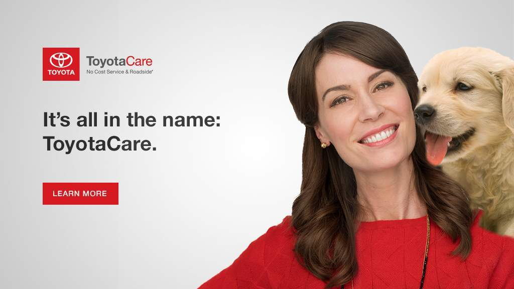 NAT Optional Campaign Toyota Care