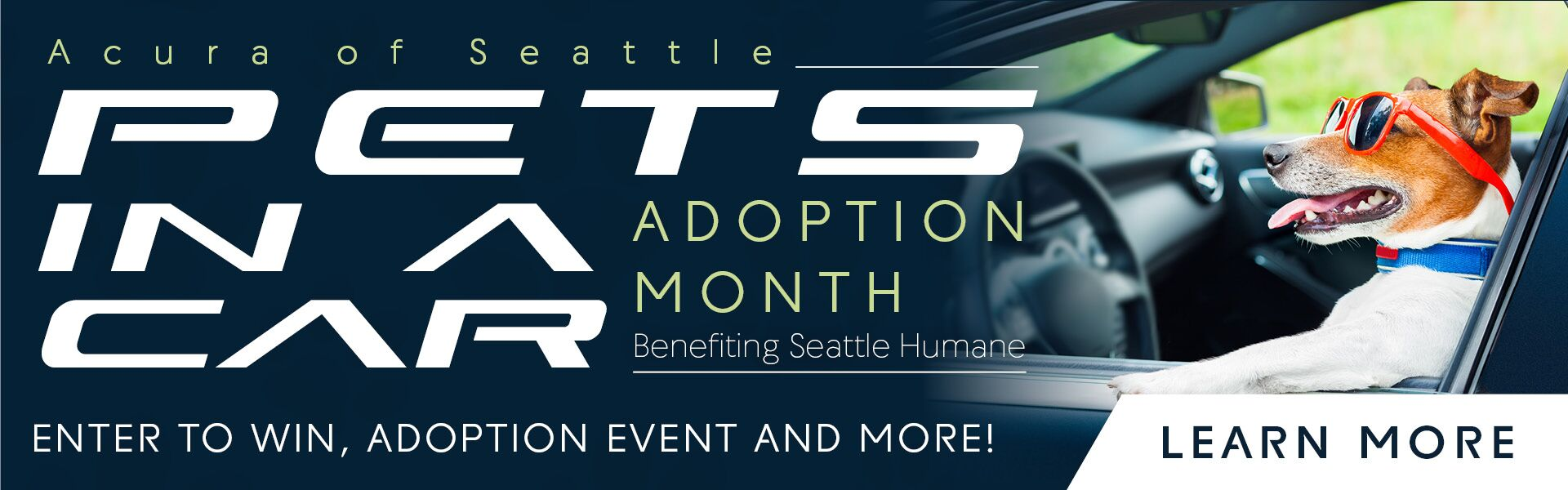 Acura of Seattle Adoption Event
