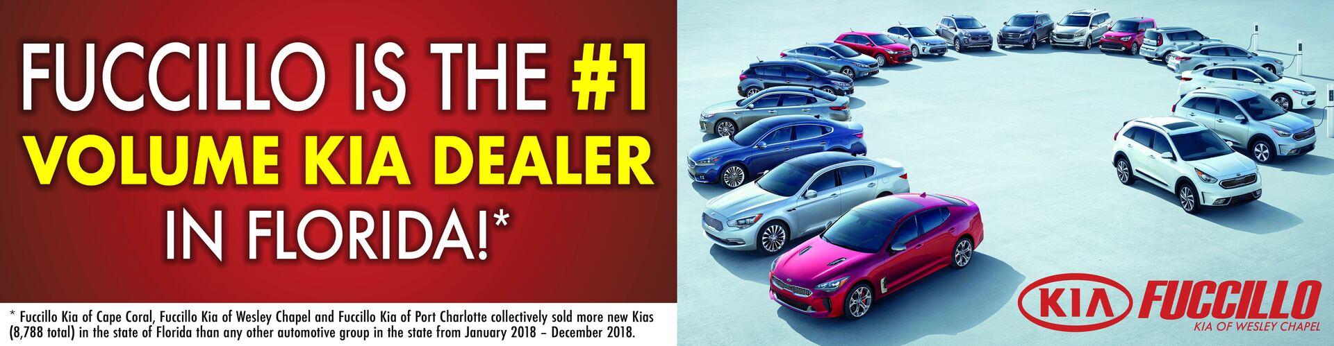 1 Volume Kia Dealer