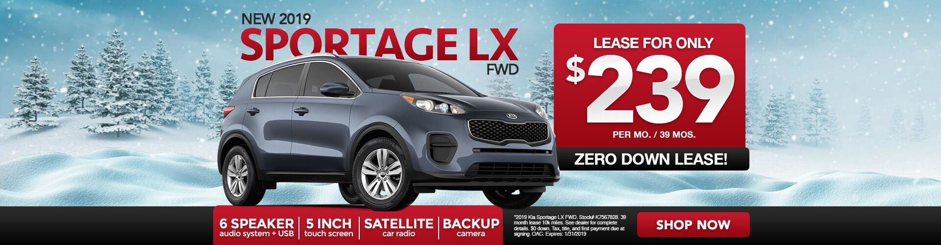 January Sportage Special