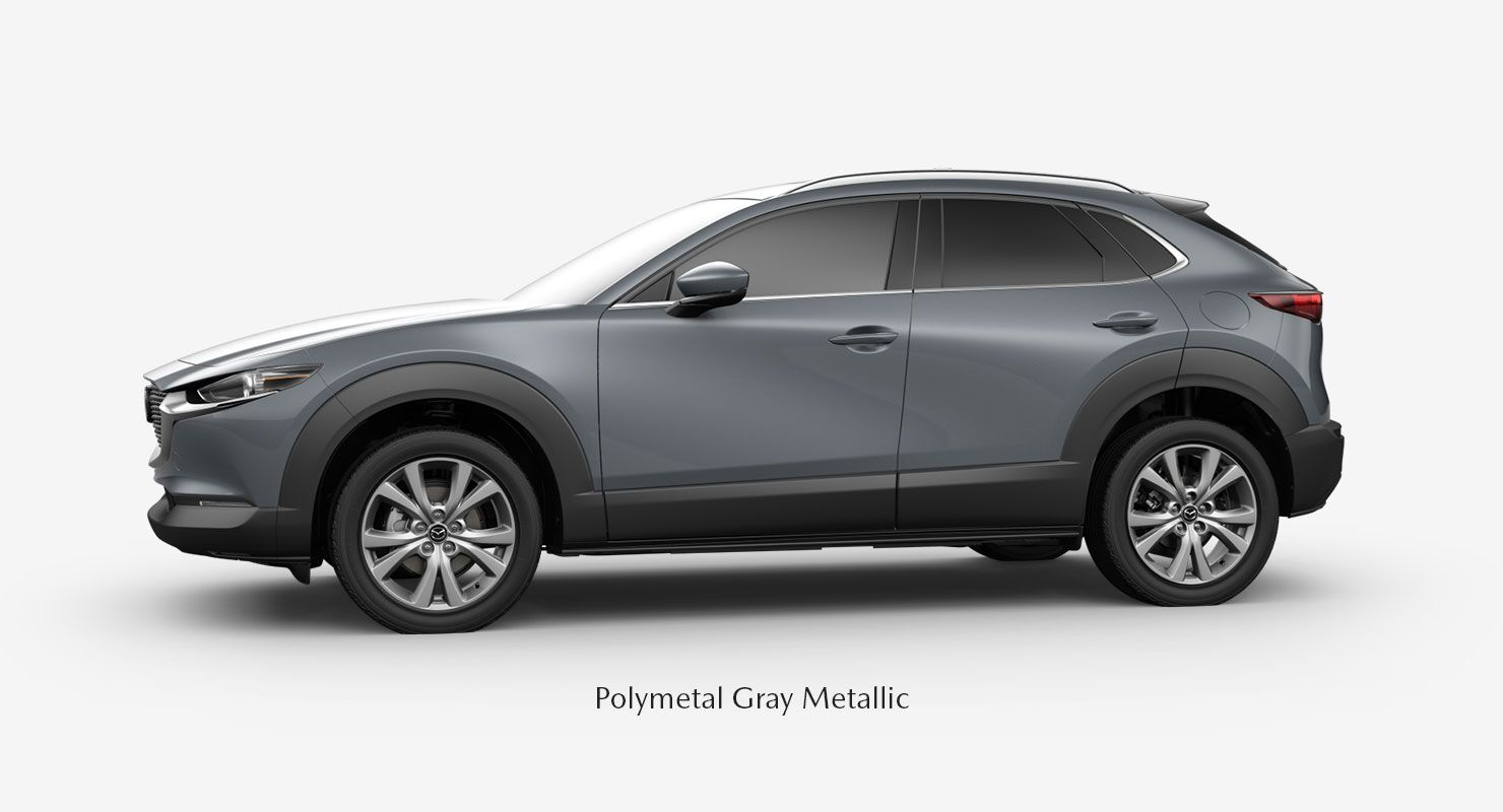 Polymetal Gray Metallic