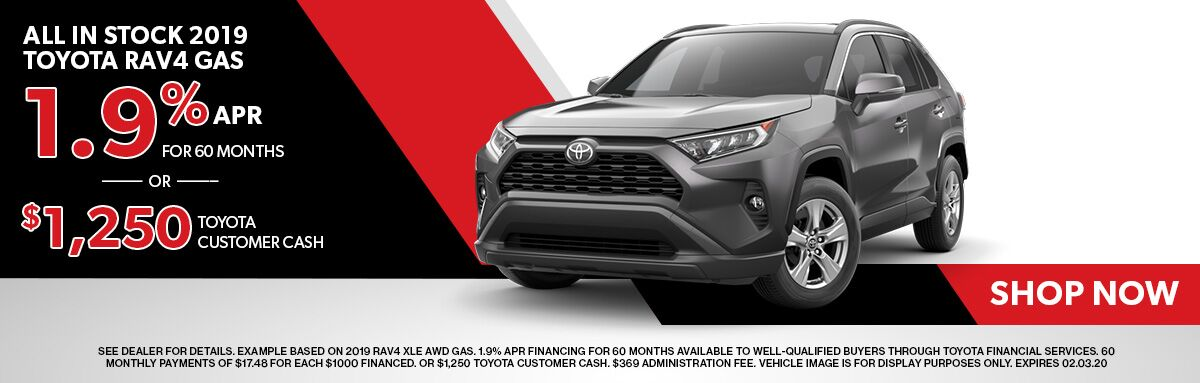 All In Stock 2019 Toyota Rav4 Gas