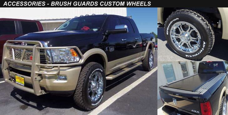 Brush Guard and Custom Wheels